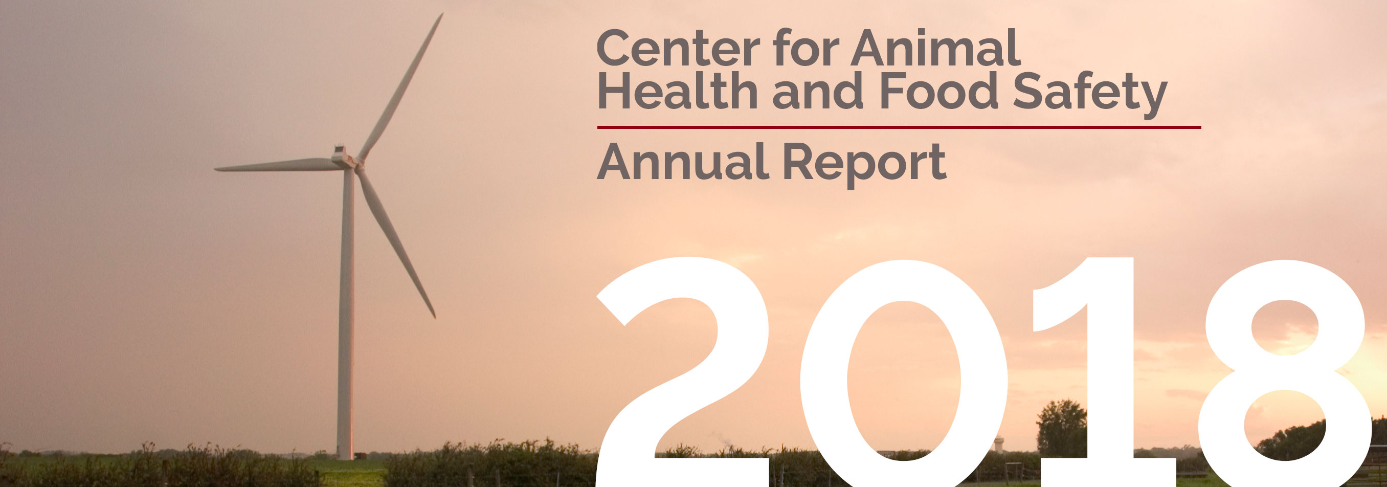 Center for Animal Health and Food Safety Annual Report 2019