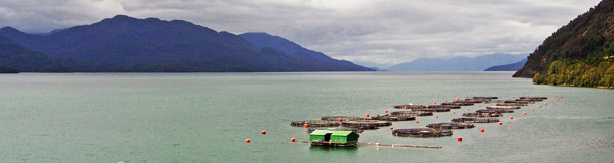 Fish farm in Chile
